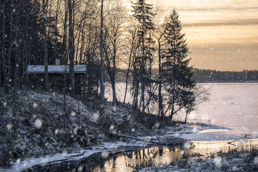 Scenic landscape with snow flakes at morning light in southern Finland Beauty In Nature Cold Temperature Cottage Day Flakes Ice Landscape Morning Light Nature No People Outdoors Reflection River Scenics Sky Snow Snow Fall Snow Flakes Snowing Sunrise Sunset Tranquil Scene Tree Water Winter