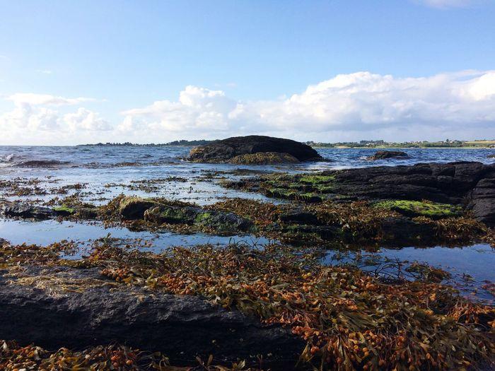 Low tide Beauty In Nature Sea Scenics Horizon Over Water EyeemPhilippines