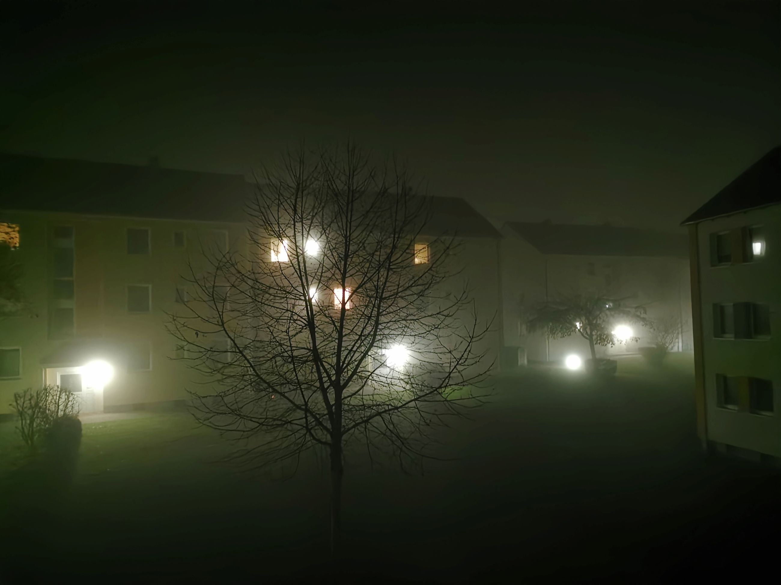illuminated, night, light, architecture, lighting equipment, darkness, bare tree, built structure, building exterior, tree, no people, lighting, street light, street, plant, building, house, nature, fog, morning, city, outdoors, sky, glowing, residential district, light fixture, electricity