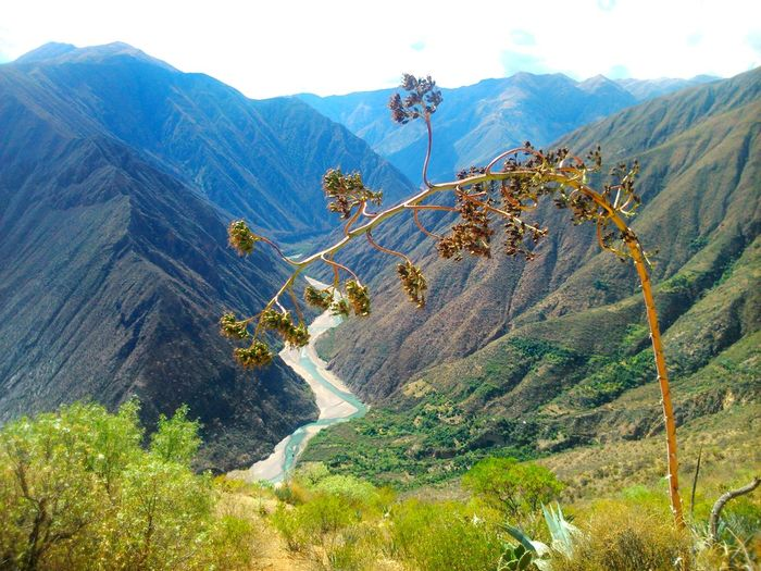 El río Mantaro entre Ayacucho y Huancavelica Mountain Nature Tree Mountain Range Beauty In Nature Outdoors Landscape Scenics No People Forest Sky Tourism Sight Valley Hill