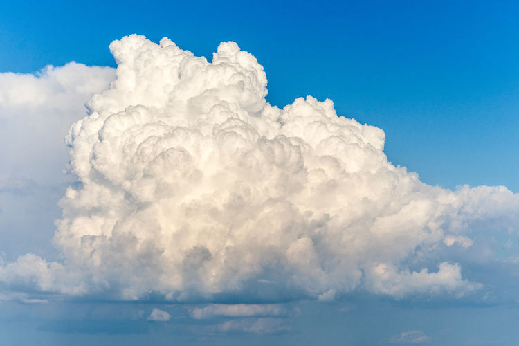 Nature Plants Summer Italy Tuscany Cloud - Sky Sky Cloudscape Blue Beauty In Nature Tranquility No People Tranquil Scene Fluffy White Color Idyllic Scenics - Nature Atmosphere Cumulonimbus Backgrounds Outdoors Environment Softness Wind Meteorology