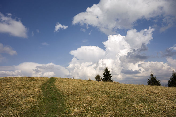 landscape Donovaly Slovakia Velka Fatra Beauty In Nature Cloud - Sky Day Environment Field Grass Green Color Growth Horizon Horizon Over Land Land Landscape Nature No People Non-urban Scene Outdoors Plant Scenics - Nature Sky Tranquil Scene Tranquility Zvolen