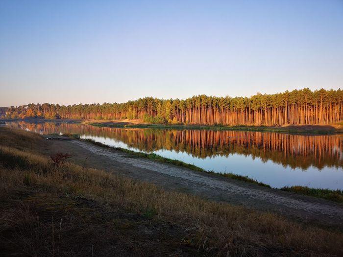 EyeEm Selects Water Tree Lake Beauty Reflection Dawn Sky Landscape Reflecting Pool Reflection Lake