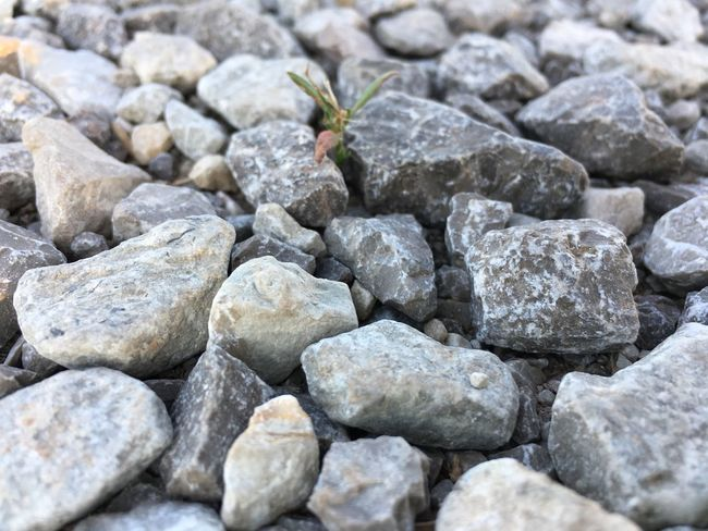 Just some rocks! Pebble Rock - Object Close-up Findbeautyeverywhere The Great Outdoors - 2017 EyeEm Awards