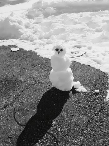 Snow ❄ Snowman⛄ Tiny Snow Person Outside sunny day Sunlight Rock Eyes Childrens Art Human Representation Day Childhood One Person Outdoors Nature People Canonsburg, PA