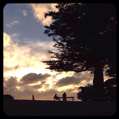 Reading & Relaxing in a beautiful park ... San Francisco by Popckorn The Storyteller - 2014 Eyeem Awards Growing Better The Moment - 2015 EyeEm Awards