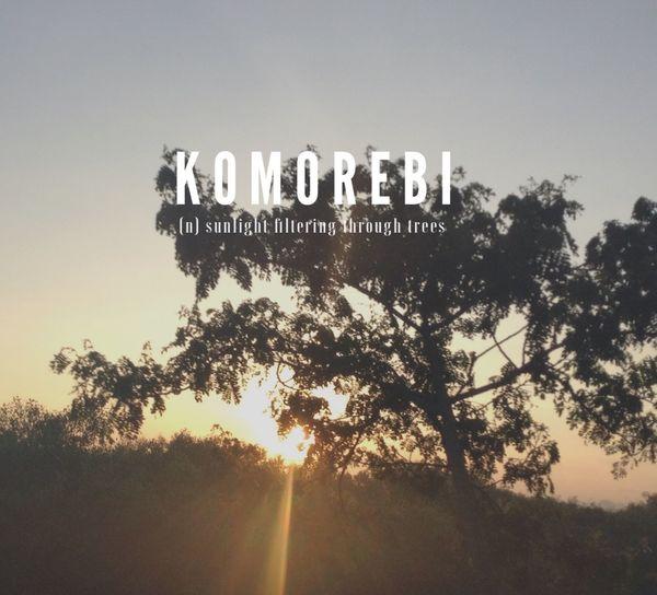 Komorebi Sun Trees