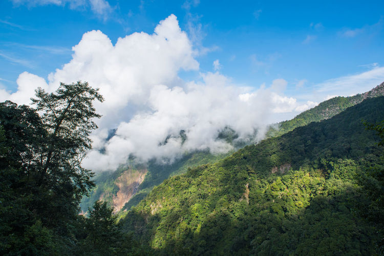 Taiwan Beauty In Nature Cloud - Sky Day Environment Green Color Idyllic Land Landscape Mountain Nature No People Non-urban Scene Outdoors Plant Scenics - Nature Sky Smoke - Physical Structure Tranquil Scene Tranquility Tree 台灣 大雪山
