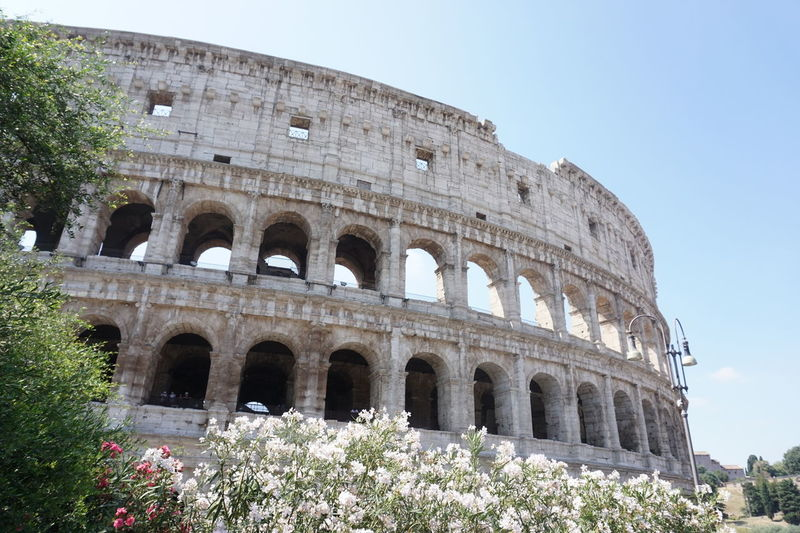 Ancient Architecture Built Structure Coloseo Colosseum Cultures Europe Europe Trip Famous Place Gladiator Historical Holiday International Landmark Italian Italy Landmark Roman Rome Tour TourGroup Tourist Travel Travel Destinations Travel Photography Travelling
