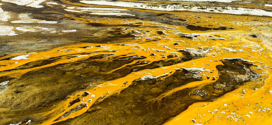 Bacteria Mat Hot SONY A7ii Yellowstone National Park Bacteria Beauty In Nature Close-up Colorful Contrast Day Landscape Nature Sony Yellow Yellowstonenationalpark