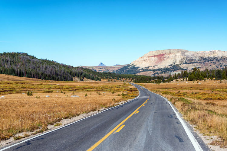 Highway and beautiful view in Shoshone National Forest in Wyoming BigHorn Buffalo Grass National Park Nature Road Scenic Trees USA View Wyoming Asphalt Countryside Dirt Environment Forest Gravel Landscape Mountain Mountains Range Scene Terrain Transportation Wilderness