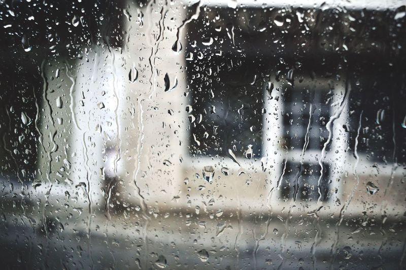 Behind the window...wWindowwWetcCardDropwWaterwWeatherrRaintTransportationtTransparentvVehicle InteriorcClose-upcCar WashmMode Of TransportlLand VehiclecCleaningbBackgroundsdDaytTreecCar Interior