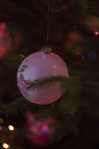 Pink christmas toy on tree Celebration Christmas Christmas Around The World Christmas Decoration Christmas Lights Christmas Ornament Christmas Tree Holiday - Event Indoors  New Year Night Tree Tree Xmas Xmas Decorations Xmas Time Xmas Tree