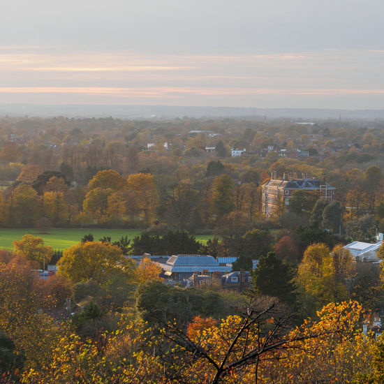 View of Ham House from Richmond Park (TW10), London Postcode Postcards Richmond Park, London TW10 Architecture Autumn Beauty In Nature Building Exterior Built Structure Day Growth Ham House High Angle View Nature No People Outdoors Scenics Sky Sunset Tranquility Tree