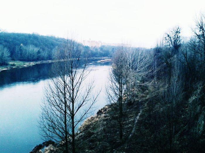 Sky River Treescollection Autumn