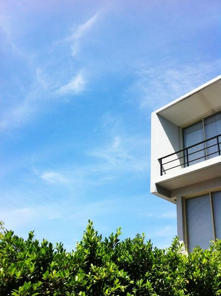 modern architecture in garden Sky and CloudsClouds And Sky Sky And Clouds Outdoors Sky Garden Building Exterior Modern House Home Mobilestock Modern Home House Architecture Modern Architecture Modern Plant Tree Leaves Nature Leaf Bluesky Blue Sky
