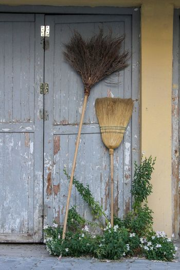 Old Door Light Blue Abandoned Garage Door EyeEmNewHere Flower Plant Broom The Street Photographer - 2018 EyeEm Awards