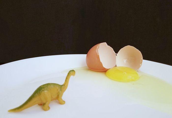 mini Dinosaur with broken egg Chicken Egg Egg Yolk Egg Concept Broken Egg Egg Shell Egg EyeEm Selects Food And Drink Sweet Food Food Plate Indoors  No People Close-up