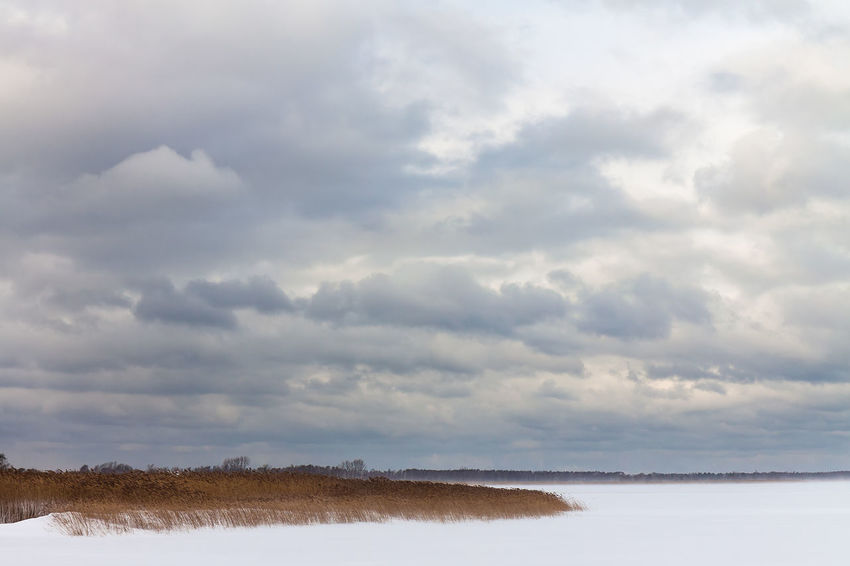 Winter on the Bodden. Bodden Frozen Relaxing Travel Winter Cloud - Sky Cold Temperature Day Fischland-darß-zingst Journey Landscape Nature No People Outdoors Reeds Sky Snow Tourism Travel Destinations Vacation Water