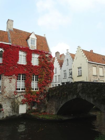 House Architecture Building Exterior Built Structure Residential Building Water Window Red Outdoors No People Sky City Cityscape Red City Brugge Cityscape Belgium Autumn In Brugge Brugge, Belgium Autumn Colors Flamand Architecture Travel Destinations Vacations Architecture