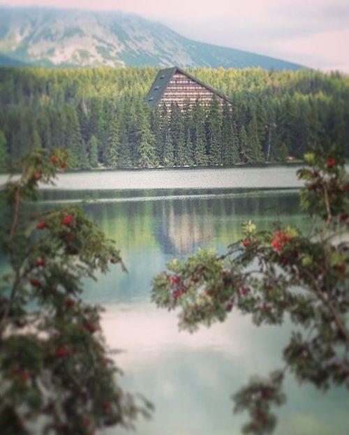 Be respectful towards the nature🌲🌲🌲 Slovakia Hightatras  Strbske Pleso Mountains Hotel Tarn Nature Pure Beauty