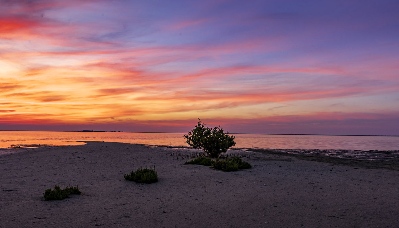 sky, sunset, sea, water, scenics - nature, cloud - sky, beauty in nature, beach, tranquil scene, tranquility, horizon over water, land, horizon, orange color, nature, no people, idyllic, plant, outdoors