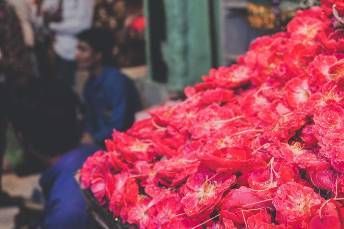 Flower Flowers Blooming Plant Petal Dew Drop Rain Freshness Life Pink Market Retail  Red For Sale Small Business Close-up Flower Market Flower Shop Bunch Of Flowers Market Stall Street Market Flower Arrangement Bouquet Display Stall The Traveler - 2018 EyeEm Awards