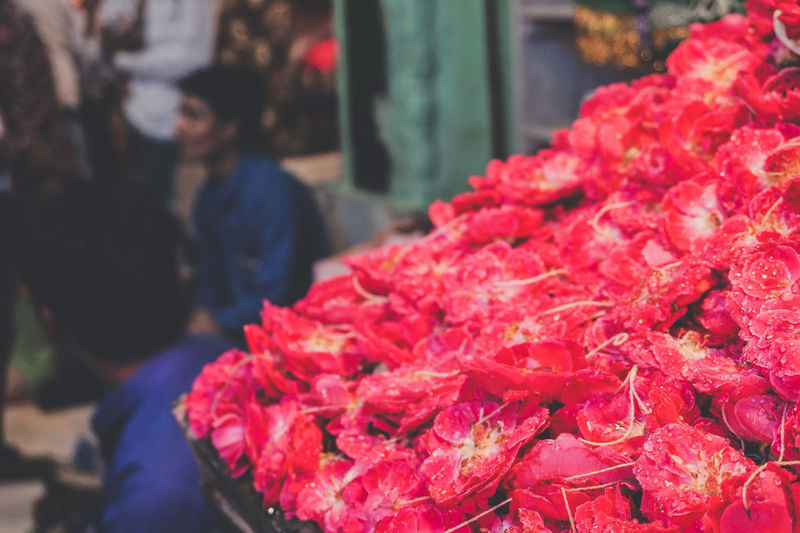 Flower Flowers Blooming Plant Petal Dew Drop Rain Freshness Life Pink Market Retail  Red For Sale Small Business Close-up Flower Market Flower Shop Bunch Of Flowers Market Stall Street Market Flower Arrangement Bouquet Display Stall The Traveler - 2018 EyeEm Awards