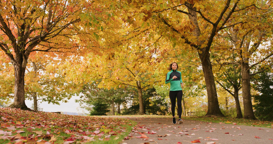 Adult Adults Only Autumn Change Day Exercising Forest Full Length Healthy Lifestyle Jogging Leaf Mature Adult Nature One Mature Woman Only One Person One Woman Only Only Women Outdoors Park - Man Made Space People Sport Sports Clothing Tree Vitality Wellbeing