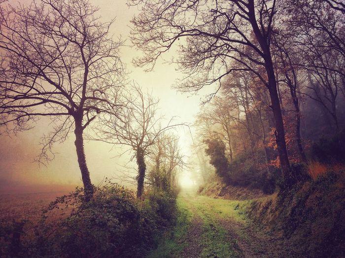 NEM Submissions EyeEm Best Shots - Landscape IPhoneography WeAreJuxt.com