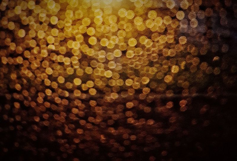 The concept? I dont know, it looked cool. Backgrounds Abstract Textured  Full Frame Close-up No People Beauty Defocused Outdoors Day Water Rainy Days Droplets Gold Colored EyeEmNewHere
