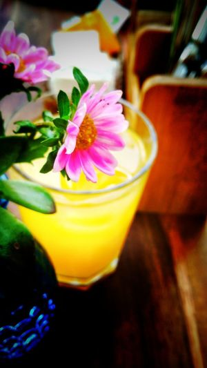 Flower Drink Cocktail Flower Freshness Refreshment Drinking Glass Food And Drink Close-up No People Alcohol Bar - Drink Establishment Multi Colored Indoors  Cold Temperature Fragility Day Blended Drink Tropical Drink Mojito Flower Head