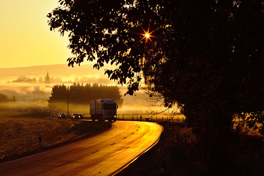 Car Day Land Vehicle Mist Nature No People Outdoors Road Sky Sunrise Sunstar Transportation Tree