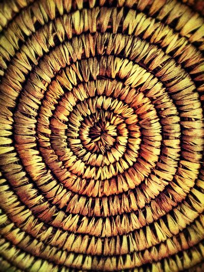 basket lid detail Throw A Curve Supernormal Wicker Simple ♥ Taking Photos