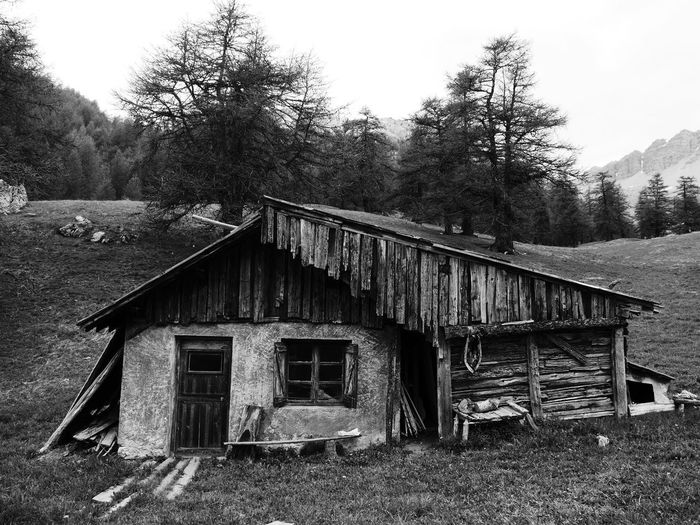 Shack, alps Architecture Tree Built Structure Abandoned No People Wood - Material Day Building Exterior Grass Outdoors Tranquility Sky Nature