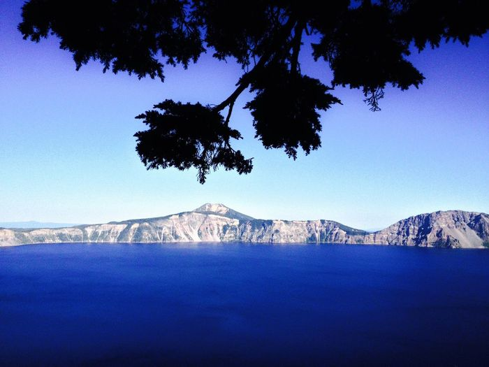 Black Pine over Crater Lake Chines Tranquility Crater Lake, Oregon Silhouette Beauty In Nature Black Pine Blue Clear Sky Day Landscape Mountain Mountain Range Nature No People Outdoors Pine Tree Scenics Sky Tranquil Scene Tranquility Travel Destinations Tree Vulcano Water
