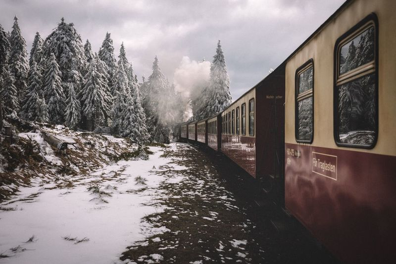 Harz Brockenbahn Germany Exploring Forest Rural Roadtrip Travel EyeEm Best Shots Vscocam Outdoors Power In Nature Landscape VSCO Nature Mountains Traveling Explore Snow