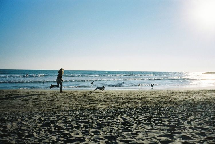 35mm Film Film People Watching Relaxing Sitges Beachphotography Everyday Joy Dog Run