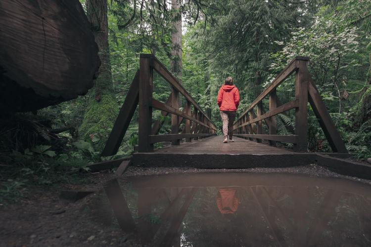 Rear view of boy walking on footbridge in forest