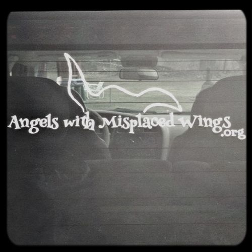 Angels With Misplaced Wings