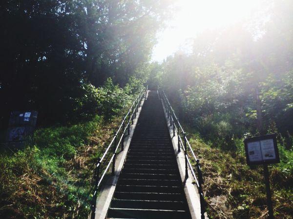 Summer Sweden Skansen Kronan Stairs