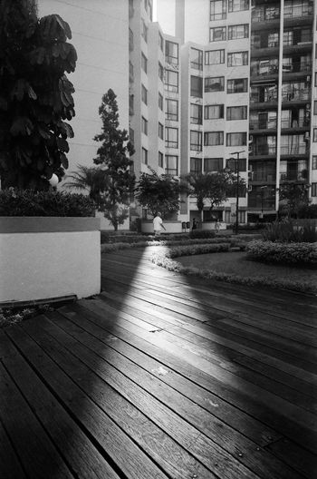 Morning deck Architecture Black And White Building Exterior Built Structure City Day Deck No People Outdoors Tree