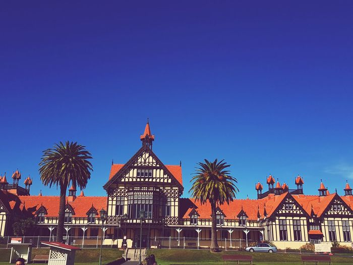 Amazing View Amazingnewzealand Nature Photography Nature_collection Naturelovers Nature Newzealand NZ Rotorua New Zealand Rotorua  Lakerotorua Palm Tree Tree City King - Royal Person Blue Clear Sky Sky Architecture