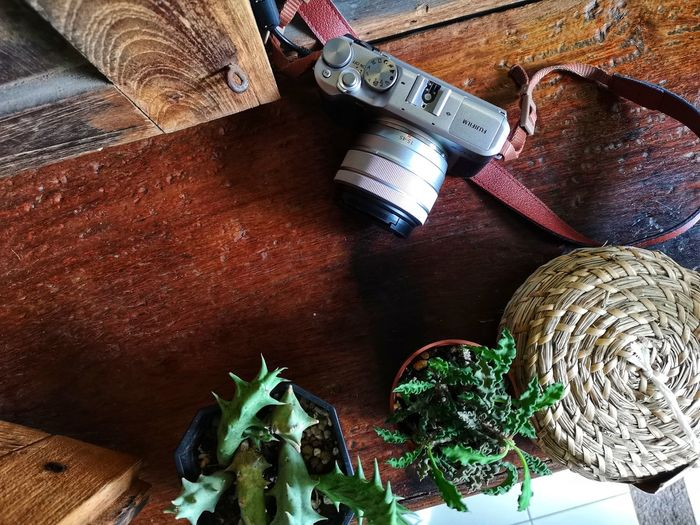 Table Indoors  Wood - Material High Angle View Still Life No People Close-up Vegetable Food Container Directly Above Cutting Board Food And Drink Nature Art And Craft Brown Healthy Eating Metal Leaf Plant Part Silver Colored