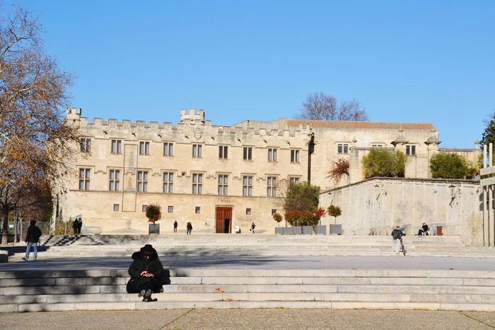 Woman Sitting Alone Woman Sitting Texting Avignon Avignon, France France Square Architecture Sunny Travel Destinations Clear Sky History Tree Building Exterior