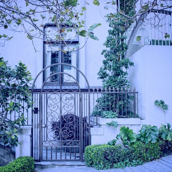 Just Give Me The Night! EntranceThe Architect - 2017 EyeEm Awards Door Architecture Gate Façade Built Structure Wrought Iron Outdoors Building Exterior Old-fashioned Doorway No People Tree Day Sommergefühle The Architect - 2018 EyeEm Awards