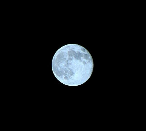 Full moon rising in Libra Moon Night Moon Surface Astronomy No People Nature Outdoors Low Angle View Beauty In Nature Scenics Space Sky Close-up Night Sky Astrophotography
