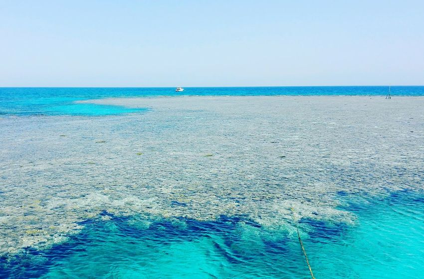Sea Beach Blue Water Sunny Horizon Over Water Sand Nature Clear Sky Sky Tranquility Day Beauty In Nature Outdoors Vacations Travel Destinations Wave Landscape Scenics Nautical Vessel Sun Freshness Reflection Red Sea,blue Water Red Sea,Hurghada,Egypt EyeEmNewHere