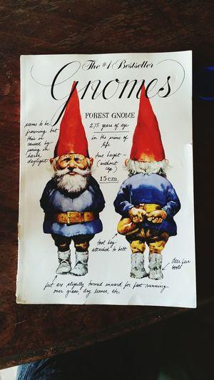 Gnomes Imheretobreaktherules Gnomesiveknown Booksaboutgnomes Moondogg43