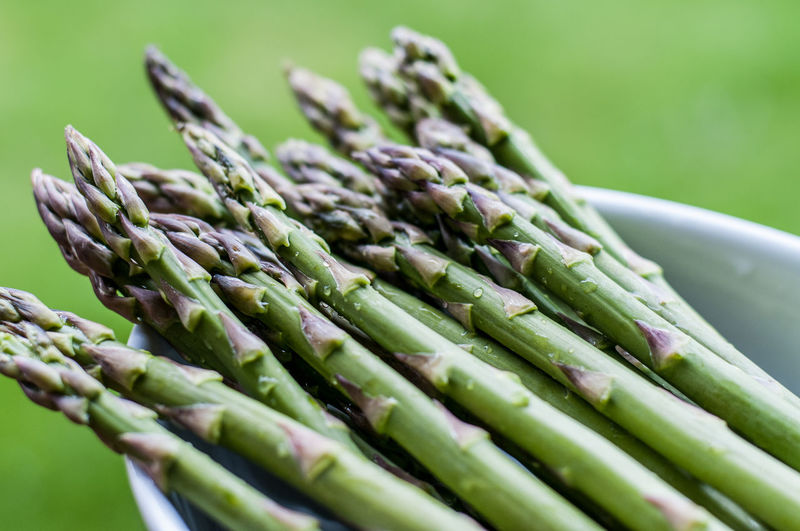 Aspargus Asparagus Asparagus Season Close-up Food Food And Drink Fresh Green Freshness Green Color Healthy Eating Nature No People Outdoors Raw Food Vegetable